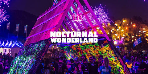 nocturnal wonderland colorful logo