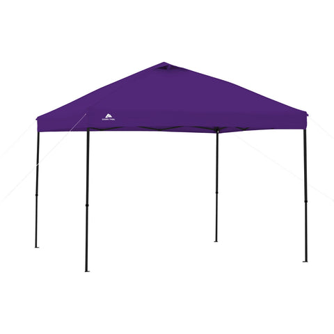 Purple Tent Canopy for Camping at Lightning in a Bottle