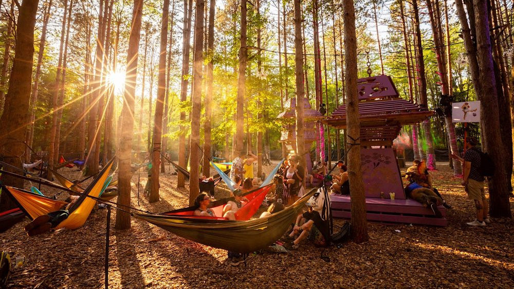 essentials for camping music festivals