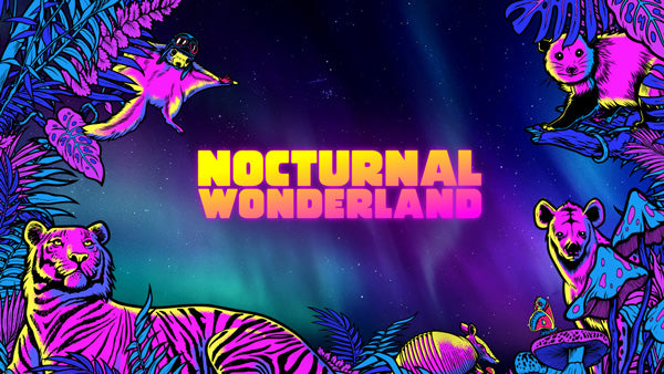nocturnal wonderland music festival rave guide