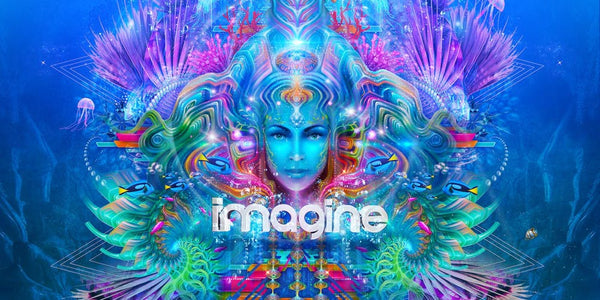 imagine music festival colorful mermaid logo