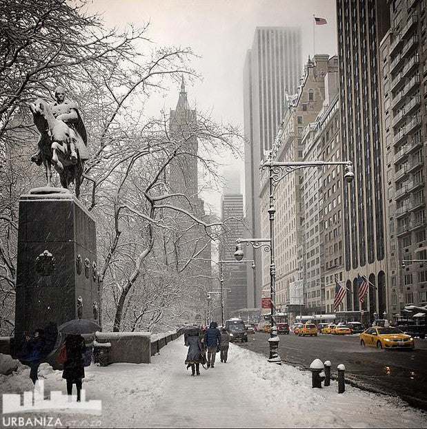 NYC Winter Statue