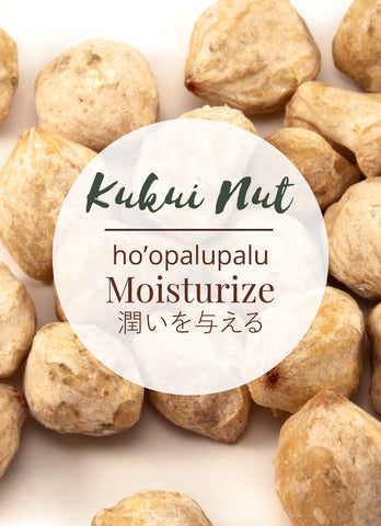 Kukui Nuts are in Hanalei Moisturizing Body Lotion