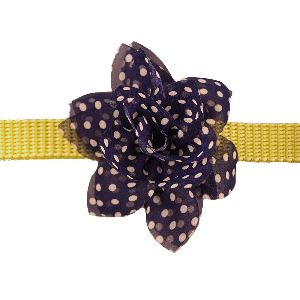 Flower - Navy Polka Dot