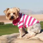 Dog Polo - Striped Polos - Pink Yarrow and White