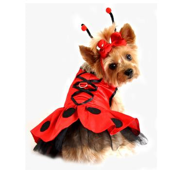 Dog Costume - Lady Bug