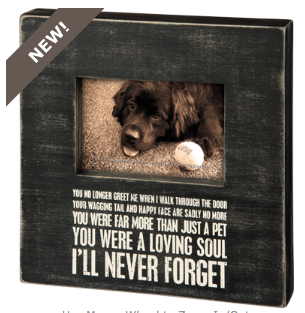 Box Frame - I'll Never Forget - Three Humans & A Dog Company