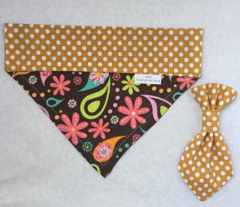Pet Tie - Brown Paisley with Polka Dots