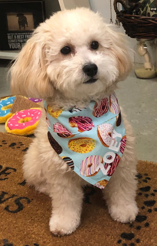 Bandana - Personalized Yummy Donuts
