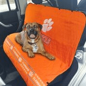 Car Seat Cover - Clemson Tigers Car Seat Cover