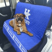 Car Seat Cover - KENTUCKY WILDCATS CAR SEAT COVER
