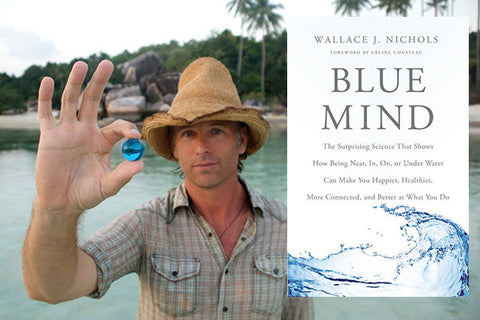 Blue Mind books for surfers