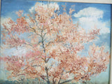Vintage Original Shabby Cottage Oil Painting SpringTrees Pink Lapacho Tree Bloom