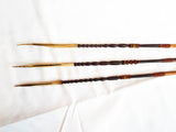 Antique Head Hunting Cassowary Bone Tipped Arrows ~ Papua New Guinea