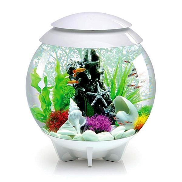 biOrb HALO 30 LED Aquarium