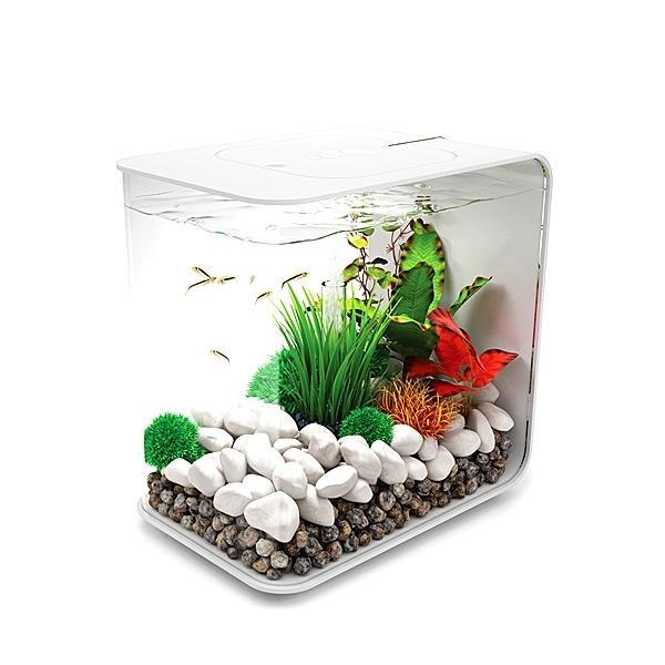 biOrb Flow 15 Aquarium with Standard LED Lighting
