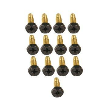 Aquascape Brass Screws 13/pack