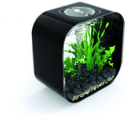 biOrb Life 30 MultiColored Remote Aquarium