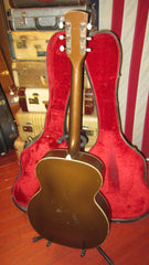 Vintage 1960's Harmony Colorama Arch Top Acoustic Guitar w/ Original Case