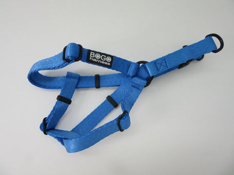 Royal Blue Harness