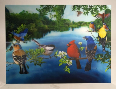 3D Lenticular Poster Backyard Birds