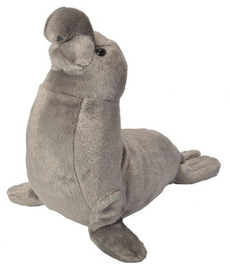 Cuddlekins Elephant Seal (12-inch Stuffed Animal)