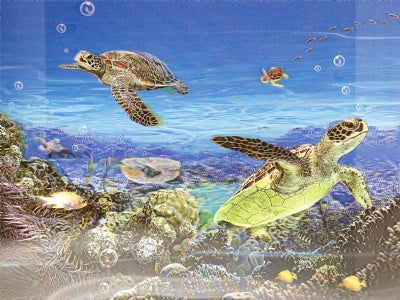 3D Lenticular Poster Sea Turtles