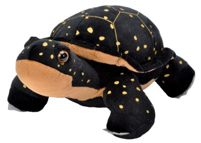 Cuddlekins Spotted Turtle (12-inch Stuffed Animal)