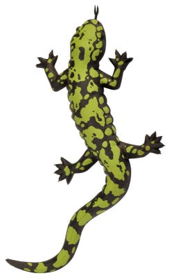 Green Spotted Salamander (9-inch)