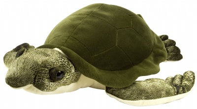 "Cuddle Cove 20"" Green Sea Turtle"
