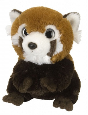 Wild Watcher Red Panda