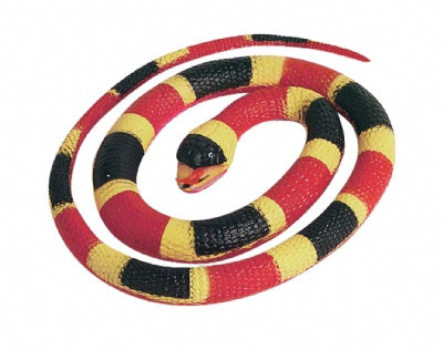 Small Rubber Coral Snake