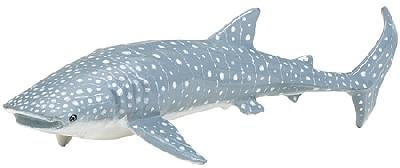 Monterey Bay Whale Shark