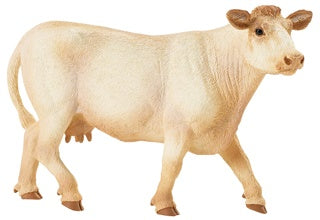 Safari Farm Charolais Cow