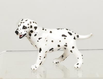 Wild Safari Dalmatian Puppy
