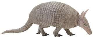 Armadillo (Incredible Creatures)