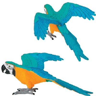 Wild Safari Gold and Blue Macaw