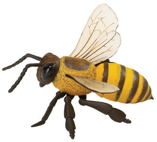 Honeybee (Incredible Creatures)