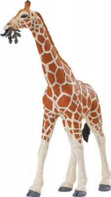 Wild Safari Reticulated Giraffe Adult