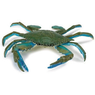 Blue Crab (Incredible Creatures)