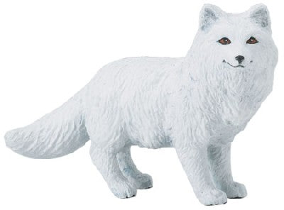 Wild Safari Arctic Fox