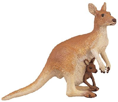 Wild Safari Kangaroo with Baby