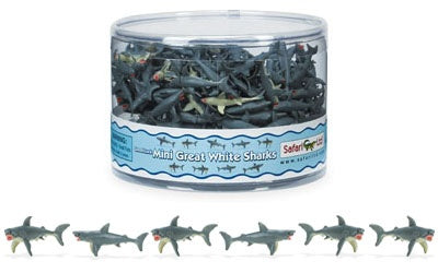 Mini Great White Shark (1 shark)