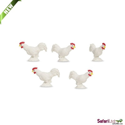 Mini Roosters (1 Rooster)