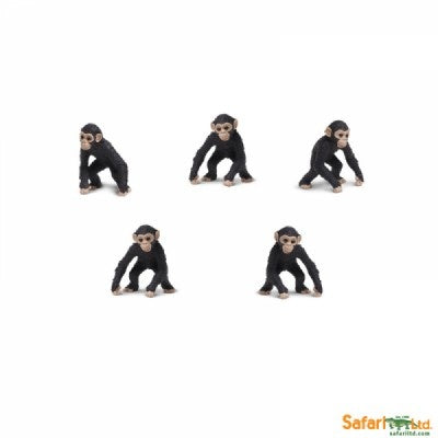 Mini Chimps (1 Chimp)