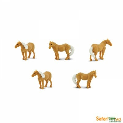 Mini Palominos (1 Palomino)
