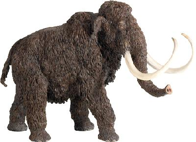 Woolly Mammoth (The Carnegie Collection)