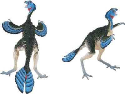 Caudipteryx (The Carnegie Collection)