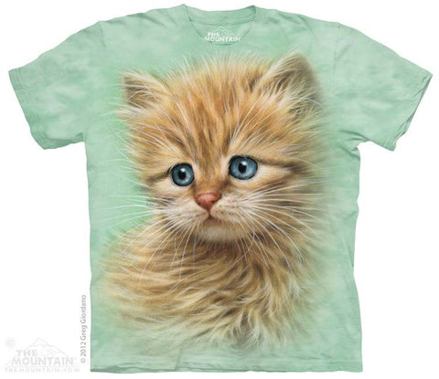 Kitten Portrait T-Shirt