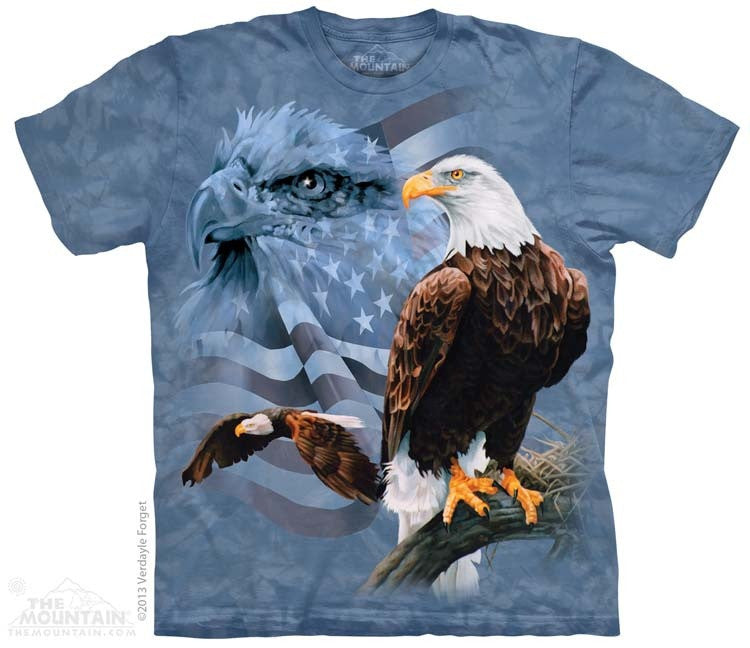 Faded Flag and Eagles T-Shirt